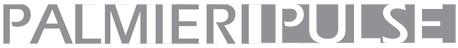Palmieri Logo - Grey